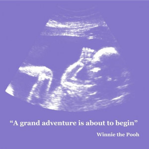 grand adventure is about to begin, Winnie the pooh. Bible Quotes ...