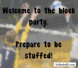 Found on volleyballu.com