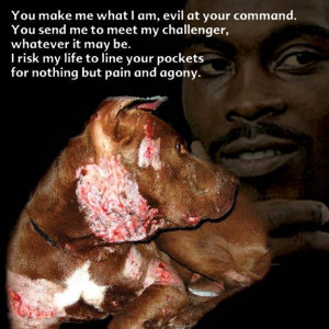 What Makes Michael Vick So Bad?