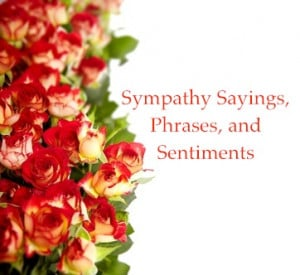 Here is a collection of sympathy sayings and phrases for you to copy ...