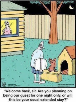 Funny Husband Dog House Hotel Cartoon - Welcome back, sir. Are you ...