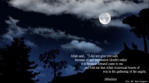 night-moon-wolf-clouds-dark-nature