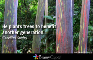 He plants trees to benefit another generation. - Caecilius Statius