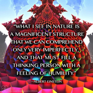 Nature is a magnificent structure