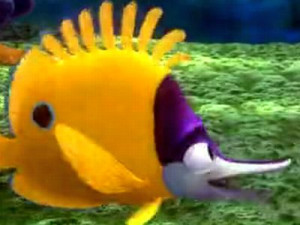 Tad, a young yellow longnose butterflyfish