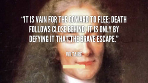 30+ Best Voltaire Quotes
