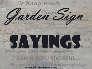 Feel Free Talk These Plants...