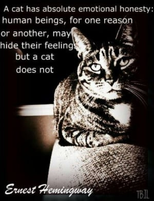 Ernest Hemingway quote about cats and humans
