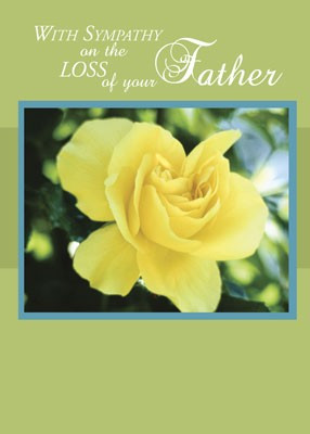 4370 Loss of Father, Yellow Rose