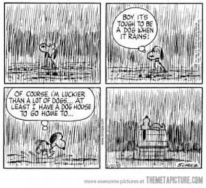 Funny photos funny Snoopy comic rain