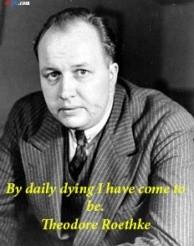 Theodore Roethke http://quotes-4u.tumblr.com/