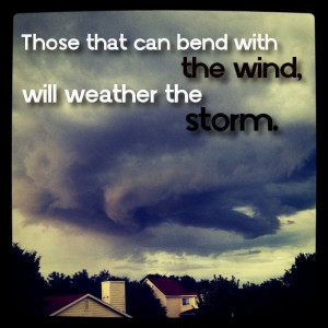 Those that can bend with the wind, will weather the storm.