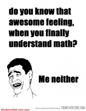 The Feeling Of Understanding Math - Cute Funny Quotes About Life