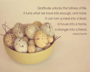 Straight from the Heart – A Gratitude Journal (Michelle D. Howe)