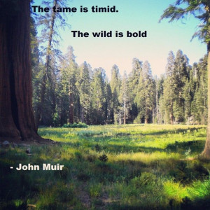John Muir Quote #49. Sequoia National Park.