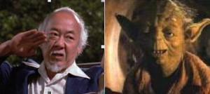 Yoda or Mr miyagi?