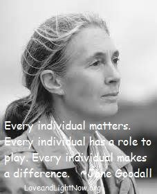 ... makes a difference jane goodall jane goodall quotes quotes p
