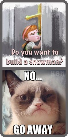 Frozen-memes-..-..-Top-17-most-Funny-Frozen-Quotes-Humor