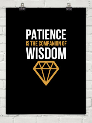 Patience is the companion of wisdom.
