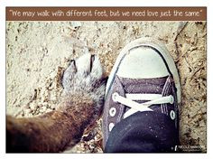 Animal Welfare, Image Quotes, Animal Image