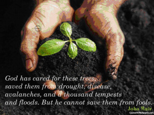 John Muir Trees Quotes Images, Pictures, Photos, HD Wallpapers