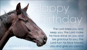 Horse Birthday Quotes Quotesgram