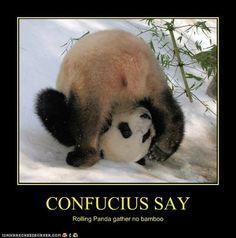 confucius say - Google Search More