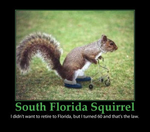 cute baby sayings for posters | South Florida Squirrel - funny poster ...