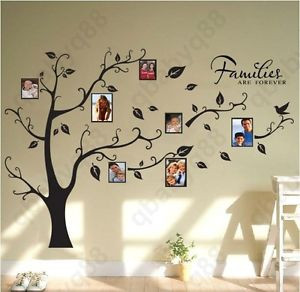 Family-Picture-Photo-Frame-Tree-Wall-Quote-Art-Stickers-Vinyl-Decals ...