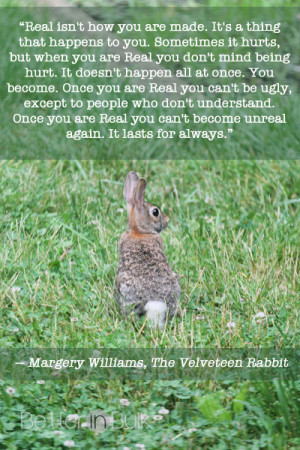 Real Isn't How You Are Made – Velveteen Rabbit Quote #WW