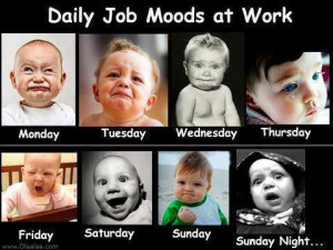 Funny Pictures-Daily Job Moods-Work-Sunday-Saturday-Pictures-Images