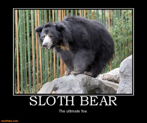 sloth-bear-sloth-bears-funny-enemy-challenge-demotivational-posters ...