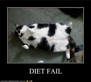Part Two, Funny diet quotes with culprits