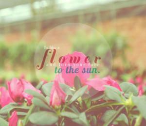 Flower Quotes Tumblr Run Away