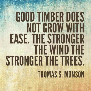 ... does not grow with ease the strong The wind the stronger the trees