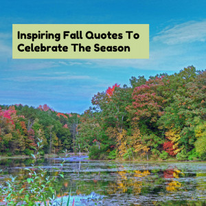 Inspiring Fall Quotes To Celebrate The Season