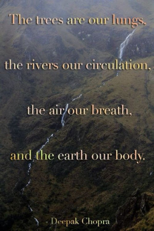 The importance of our environment to our existence on earth