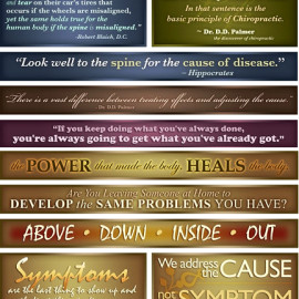 Set of 10 Decorative Chiropractic Quotes and Sayings{$150.00}