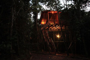 tree houses hotel.... yes please