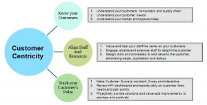 Customer Centricity Picture