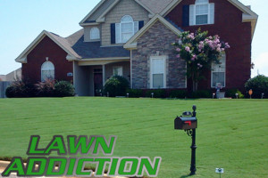 normal_lawn_service_pic2_for_lawn_addiction_lawn_care_service_in ...