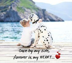 ... pet #pets #cute #dogs #quotes #beach #summer #kid #sun #travel #trip #