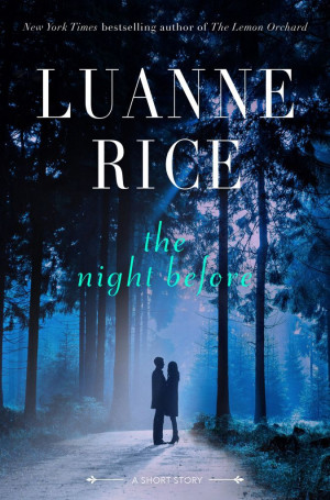 Free Short Story and Giveaway: The Night Before by Luanne Rice