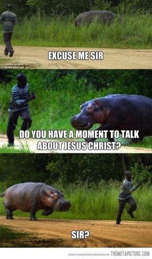 hippo evangelist?