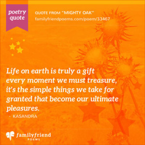 View More Poetry Quotes