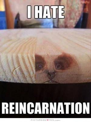 Reincarnation Quotes