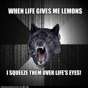 advice animals memes - Animal Memes: Insanity Wolf: Make Life Rue the ...