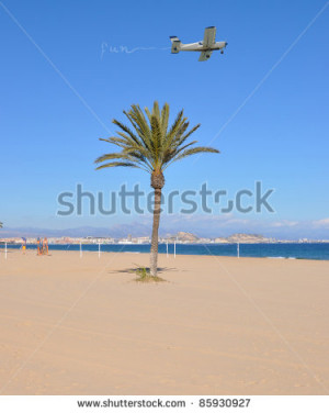 Airplane Flying over Palm Tree Writing Fun in the Sky on Mediterranean ...