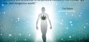 Marijuana Quotes Screenshots
