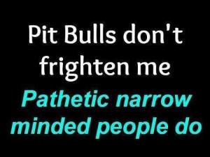 Pathetic Narrow Minded PeopleDogs, Quotes, Bullying Pitspitti, Pitbull ...